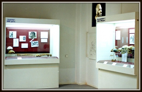 Museum of Anthropology of the University of Athens